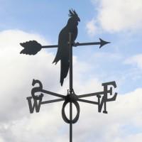 Tuulelipp Papagoi