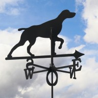 Tuulelipp Koer