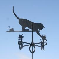 Tuulelipp Kass