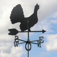 Tuulelipp Teder