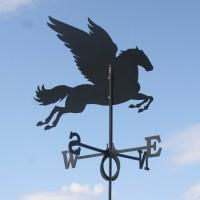 Tuulelipp Pegasus